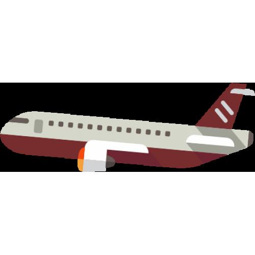 Medicina Aeroportuária